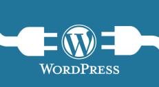 WordPress-Plugins-png-1394-10-22